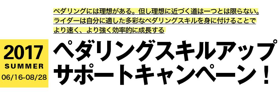 2017s_intro_h